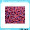 주문 인간적인 심혼 모양 USB 섬광 드라이브 (ZYF5002)
