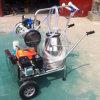 ガソリン単一のバケツのヤギの搾り出す機械