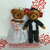 Insieme dell'orso di cerimonia nuziale del vestito dalla peluche