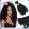 자연적인 색깔 비꼬인 컬 처리되지 않은 도매 브라질 머리 연장