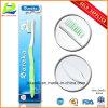 Dame Toothbrush