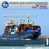 유럽에 직업적인 Sea Shipping From 중국