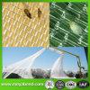 HDPEのフルーツの反鳥および反昆虫のための透過農業の反昆虫のネット