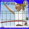高品質PVC CoatedオランダWire Mesh Fenceとの(セリウムおよびSGS)