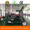Unicycle électrique pliable de roue d'Ewasp deux