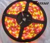 Éclairage de bande de Rgby 12VDC 5050SMD 8mm RVB LED
