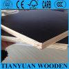 el pegamento de 15X1220X2440m m hizo frente a la madera contrachapada para Medio Oriente