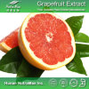 Выдержка цитруса 100% естественная Paradisi (4: 1, 5:1, 10:1, 20:1, порошок грейпфрута, нарингин 50%)