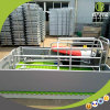 Equipo galvanizado del cerdo de la INMERSIÓN caliente para la pluma de cerdo de la granja avícola para la venta