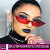 2154 Lady Novo Estilo Retro Cat-Eye Moda óculos de sol