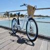 Reifen-Frauen-Strand-elektrisches Fahrrad China-26 '