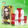 2 en 1 Pearl White Highlights Cosmetic Hair Color