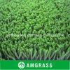 Tappeto erboso artificiale del monofilamento dei pp, tappeto erboso domestico verde-cupo dello Synthetic della decorazione