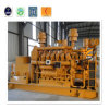 12V190 Biomass Generating Set 400kw Gas Generator Price List