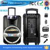 Beweglicher PA-Lautsprecher mit Bluetooth, FM, USB/SD