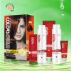 2 dans 1 Orange Highlights Shine Gloss Cosmetic Hair Dye