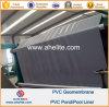 Doublure d'étang de doublures de lac artificiel de PVC Geomembrane d'Anti-Infiltration