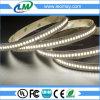 240LEDs/m를 가진 최고 광도 48W/m 24V LED 지구 SMD2835