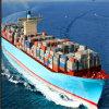 Overzees Freight FCL /LCL Shipping From Shenzhen aan Haven The van Djakarta, identiteitskaart