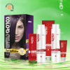2 в 1 Violet Highlights Cosmetic Hair Color Cream