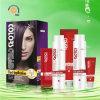 2 dans 1 couleur des cheveux Cream de Violet Highlights Cosmetic
