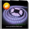 純粋な白SMD 5050 3528の335のLED適用範囲が広いライトストリップ