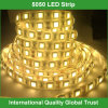12V Warm White SMD 5050 LED Strip