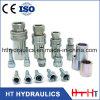 Tipo inossidabile accoppiamento rapido idraulico (ISO5675) di fine del acciaio al carbonio di Steeel