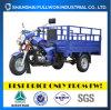 Fl150zh-FC2完全な運の貨物三輪車