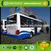 bus de 9.8m Shaolin avec 45 portées