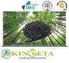 Fertilizzante organico contro l'esperimento del fertilizzante chimico