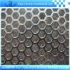 Maglia perforata del metallo con il rapporto dello SGS