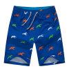 Usura della spiaggia di Shorts dello Swimwear del progettista di Shorts degli uomini di stampa dell'OEM