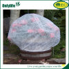 Pop-up Onlylife chaud une valeur de la couverture végétale pour la protection contre le gel