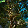 休日の通りのクリスマスの照明のための暖かい白LEDストリング豆電球の鎖