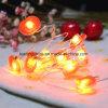 Appleストリングライトはタイマーの園遊会の暖かく白い電池式の豆電球ストリングセットとのカラーを暖める