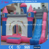Diapositiva de salto del castillo del castillo animoso inflable combinada