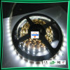 Tira de LEDS de luz/Strip o TIRA DE LEDS de luz/tira de LED Flexible (LC-WP3528-12v/60/IP67)
