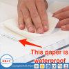 Cuaderno de papel de piedra sin agua y sin ácido