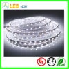 Nuevo Alto-nivel 168LEDs/Meter 2835 Strip LED Light