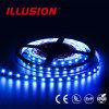 UL 승인 IP65 DC12V RGB LED 지구