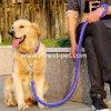 De goedkope Gepersonaliseerde Leiband en de Kraag van de Hond van Paracord van het Huisdier