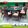 Напольный обедая комплект /Patio обедая установленный сад обедая комплект (DH-6117)