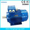 Da indução trifásica do ferro de molde de Ye3 0.25kw motor elétrico