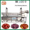 Шайба моющего машинаы плодоовощ дешевого цены промышленная