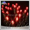 Шнура рождества фабрики оптовой 40LED 5mm СИД освещаемый батареей светлый красный