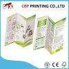 Impression adhésive d'insecte de couleur d'impression de feuillet de pli de l'imprimeur A5 de Shenzhen
