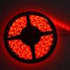 luz de tira flexible roja de 12V-24V los 30LEDs/M SMD5050 LED