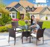 정원 테이블 의자 옥외 등나무 정원 의자 (Z353)