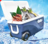 (2L~65L) Cooler Box, Ice Box, 65L Cooler Box